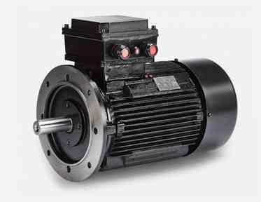 Hoyer 2902071010K  EX Motor