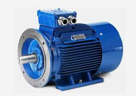 Hoyer MS Series  IE1/B3 Marine Motor