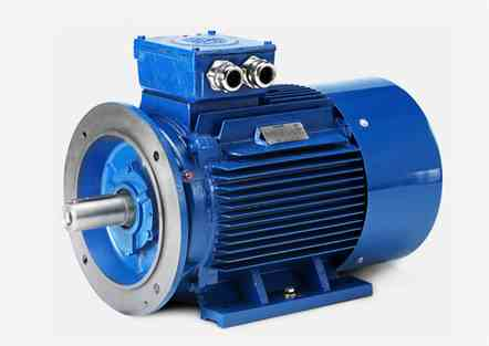 Hoyer Y2E2 Series  IE1/8 Pol Marine Motor
